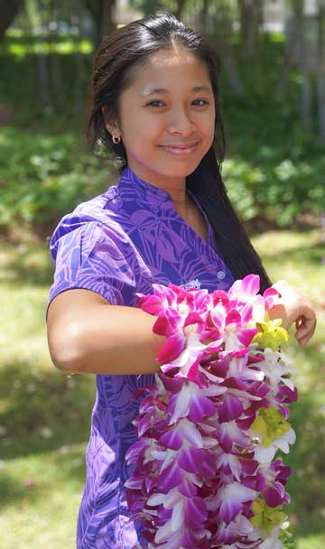 Contact leigreeting hawaii airport lei greeters contact leigreeting m4hsunfo