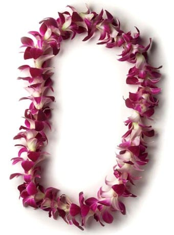 Classic Orchid Lei