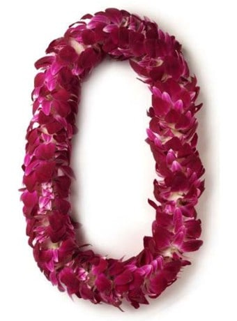 Deluxe Orchid Lei