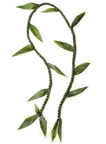 Ti Leaf Lei